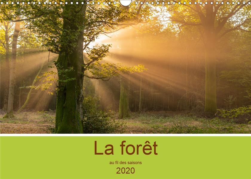 La forêt au fil des saisons (édition 2020)