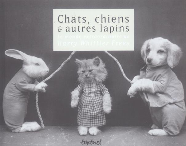 Chats, chiens et autres lapins