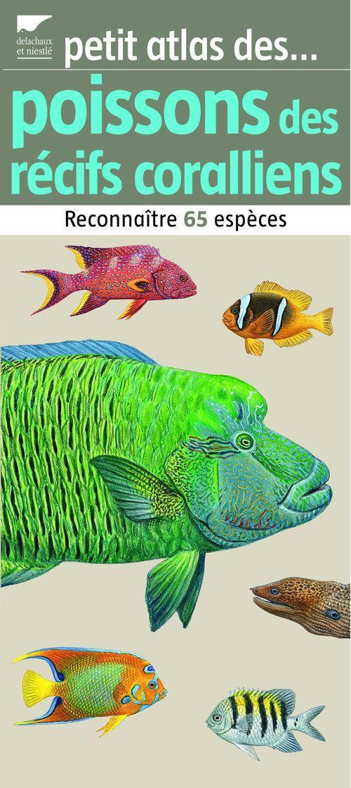 Petit Atlas Des Poissons Des Recifs Coralliens. Reconnaitre 65 Especes