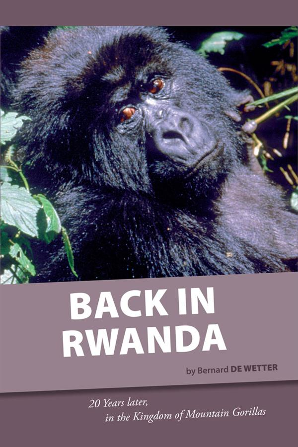Back in Rwanda ; 20 years later, in the kingdom of moutain gorillas