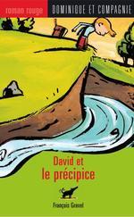 David et le précipice  - Pierre Pratt - François Gravel