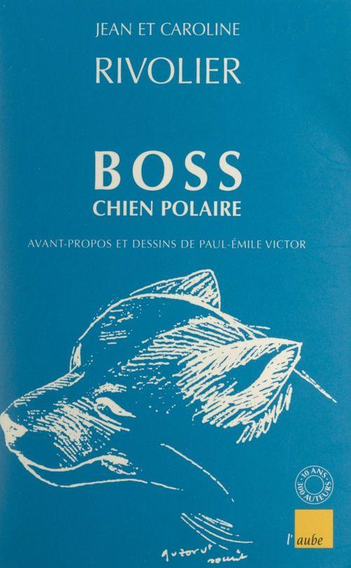 Boss chien polaire