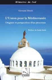 L'union pour la méditerranée ; origines et perspectives d'un processus