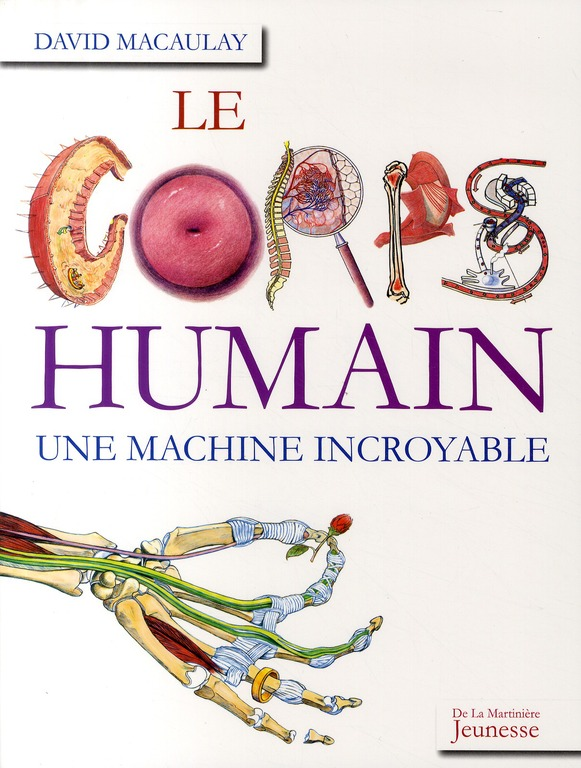 Le corps humain ; une machine incroyable