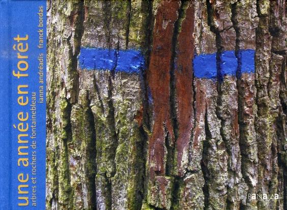 Une année en forêt ; arbres et rochers de fontainebleau