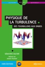 Vente Livre Numérique : Physique de la turbulence  - Sébastien Galtier