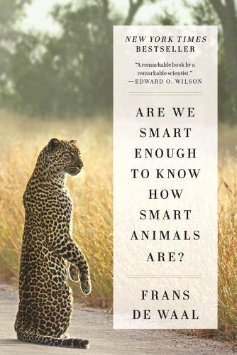 ARE WE SMART ENOUGH TO KNOW HOW SMART ANIMALS ARE? - SMART ANIMALS ARE