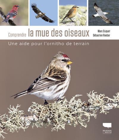 Comprendre la mue des oiseaux ; une aide pour l'ornitho de terrain