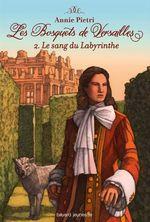 Vente Livre Numérique : Le sang du labyrinthe  - Annie Pietri