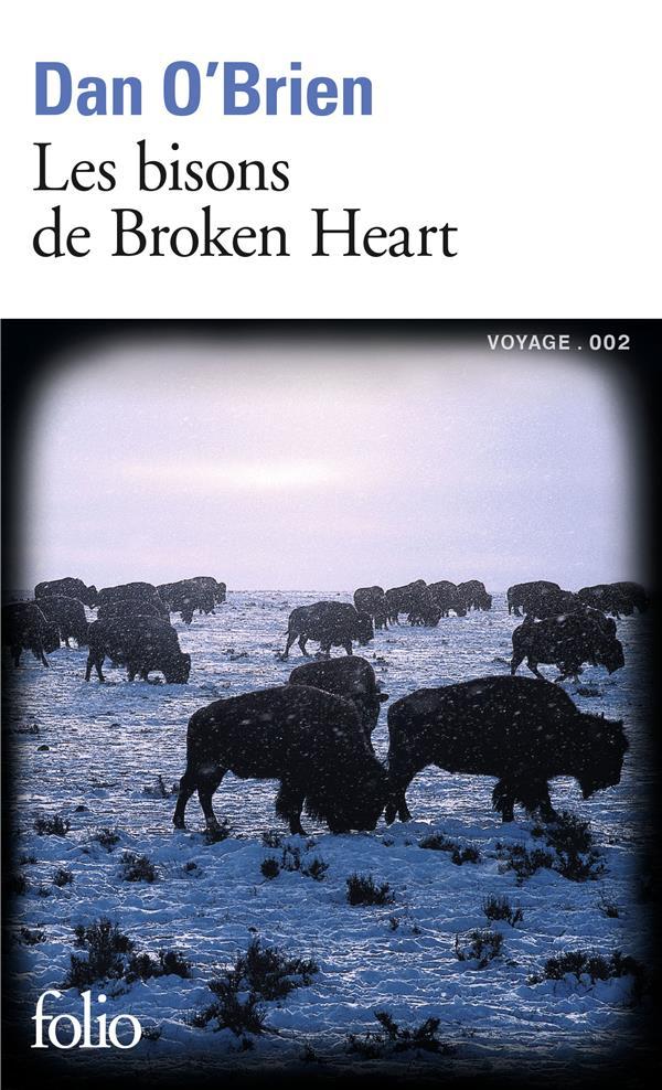 Les bisons de Broken Heart