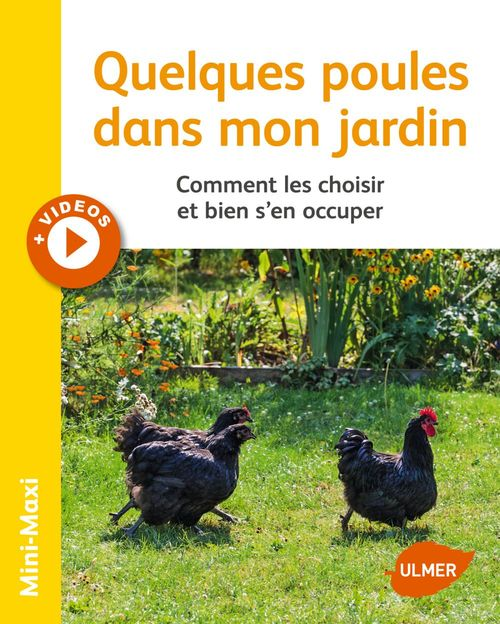 Quelques poules dans mon jardin ; comment les choisir et bien s'en occuper