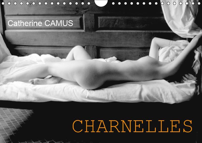 Charnelles (calendrier mural 2019 din a4 horizontal) - nus feminins sensuels (calendrier mensuel, 14