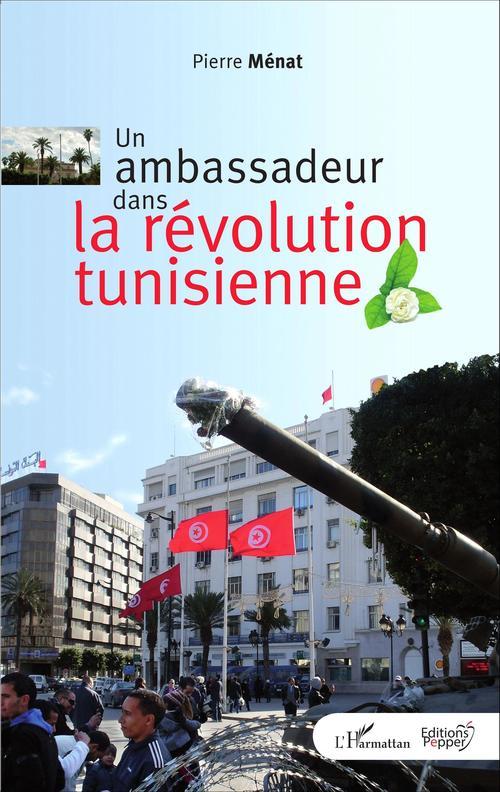 Un ambassadeur dans la révolution tunisienne