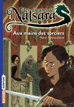 Vente Livre Numérique : Les dragons de Nalsara, Tome 10  - Alban Marilleau - Marie-Hélène Delval
