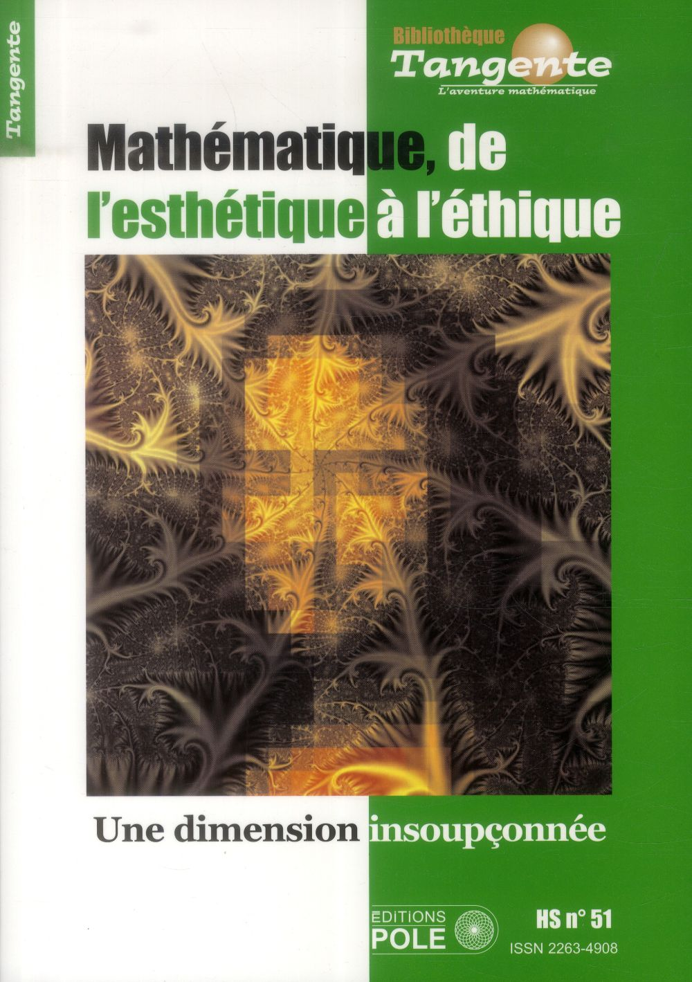 Esthetique mathematique ; une dimension insoupconnee