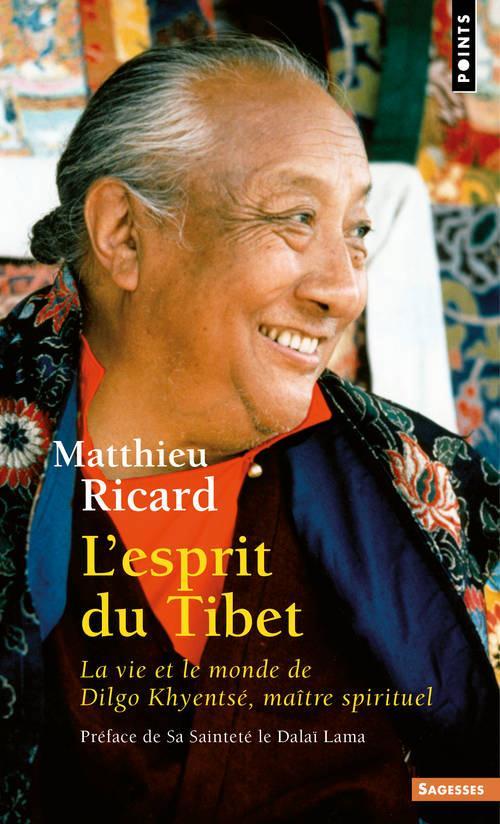 L'esprit du tibet. la vie et le monde de dilgo khyentse, maitre spirituel