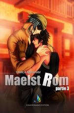 MAELSTROM - Partie 3  - Yamila Abraham