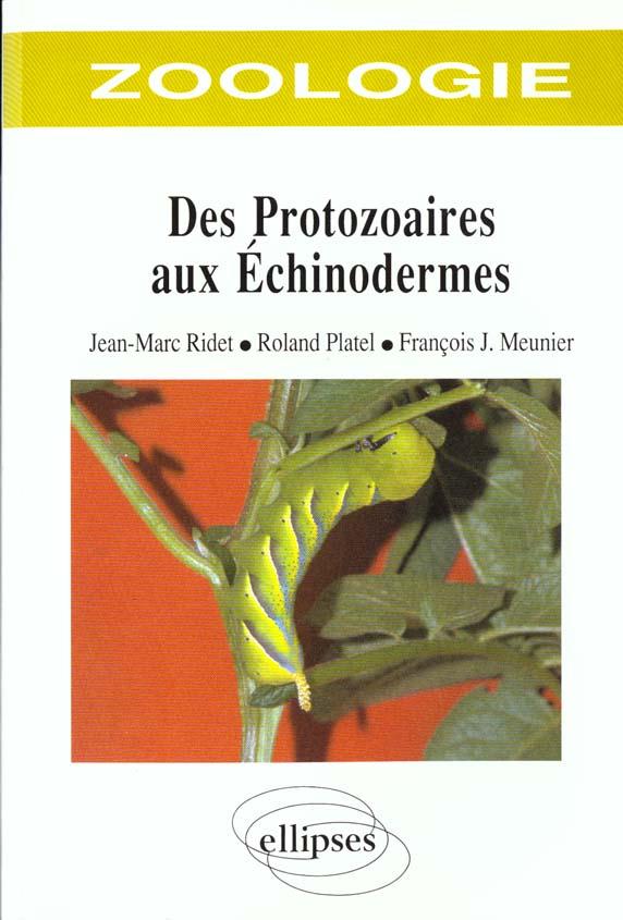 Zoologie des protozoaires aux echinodermes