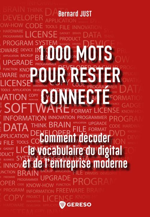 1000 mots pour rester connecte - comment decoder le vocabulaire du digital et de l'entreprise modern