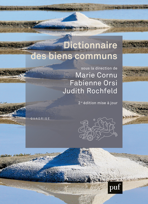 Dictionnaire des biens communs (2e édition)