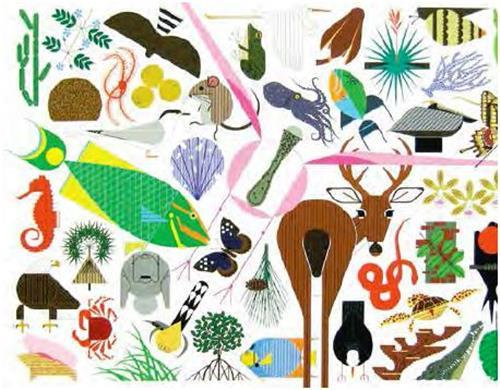 Charley harper's animal kingdom (popular edition) /anglais