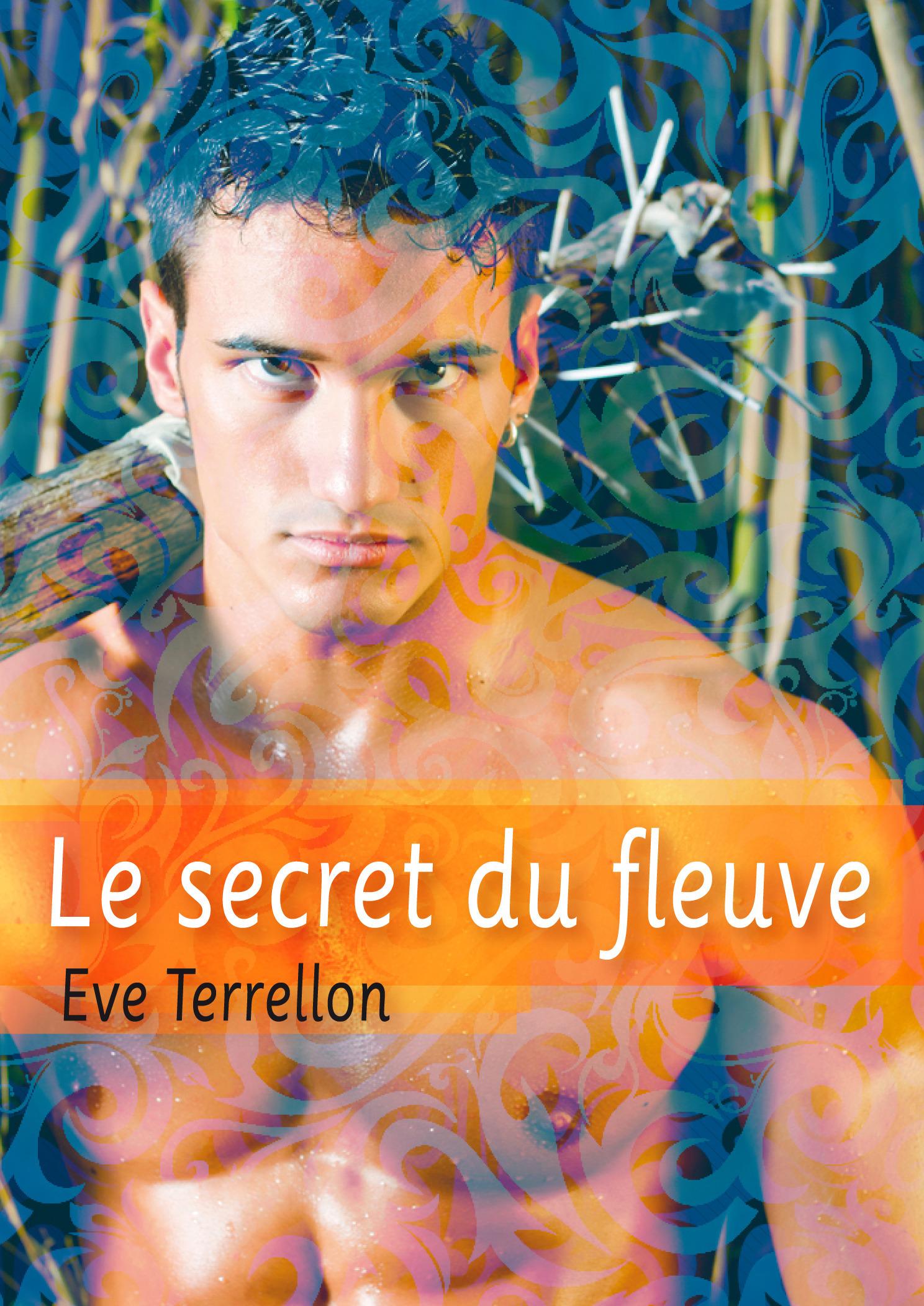 Le secret du fleuve - roman gay