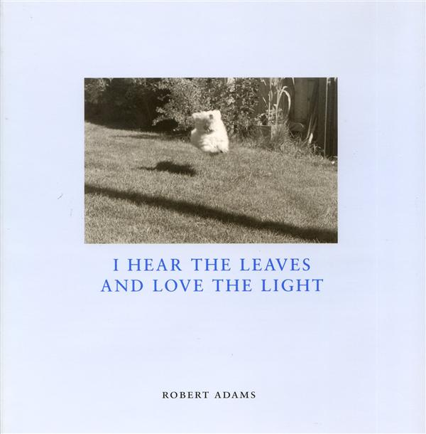 Robert adams i hear the leaves and love the light