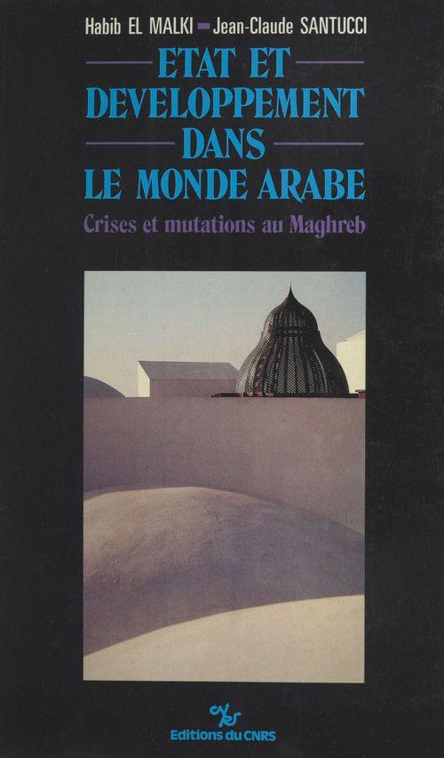 Etat et developpement dans le monde arabe