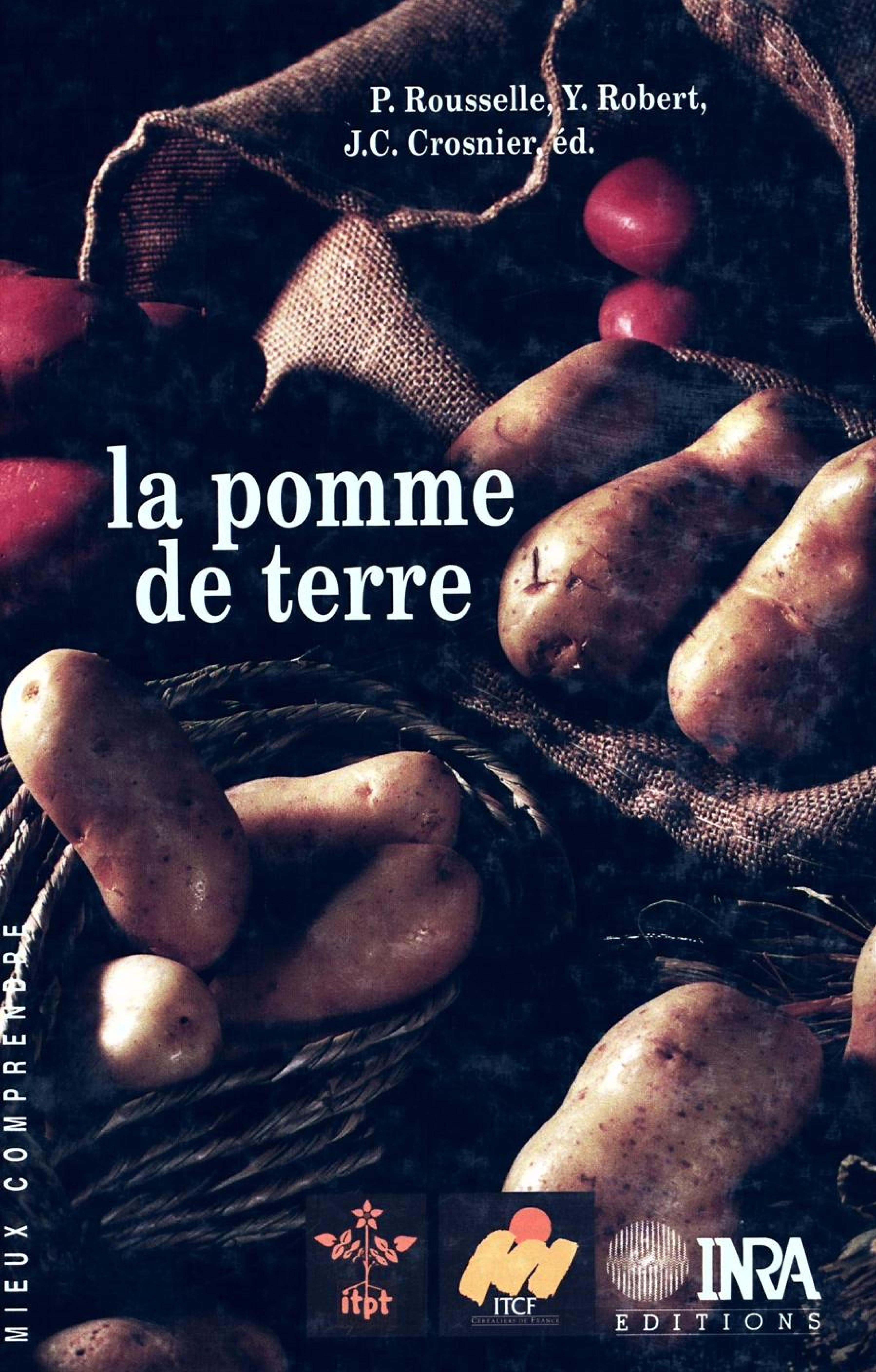 La pomme de terre - production, amelioration, ennemis et maladies, utilisations