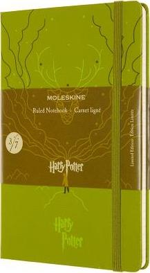 Harry Potter carnet ligné grand format vert clair
