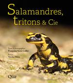 Salamandres, tritons & Cie  - Françoise Serre-Collet