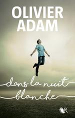 Vente Livre Numérique : Dans la nuit blanche  - Olivier Adam