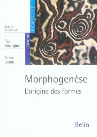 Morphogenese