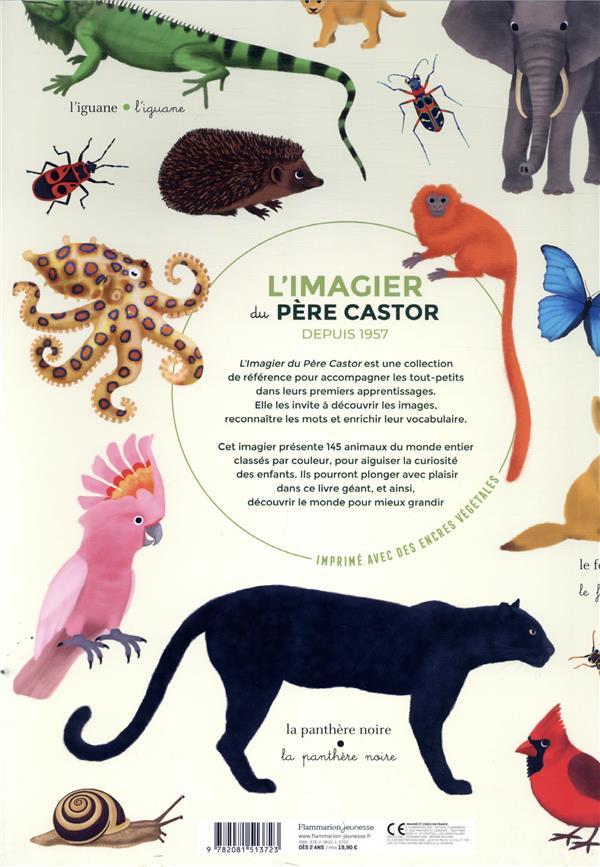 L'imagier géant du Père castor ; la couleur des animaux