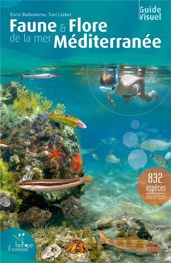 faune & flore de la mer Méditerranée