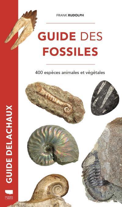Guide des fossiles ; 400 espèces fossiles végétales et animales