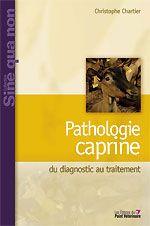 Pathologie caprine ; du diagnostic au traitement