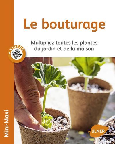 Le bouturage ; multipliez toutes les plantes du jardin et de la maison