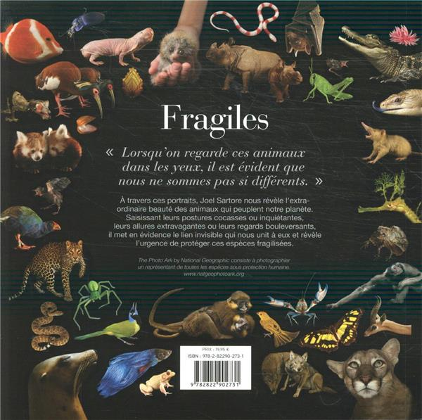Fragiles ; portraits du monde animal