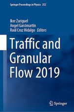 Traffic and Granular Flow 2019  - Raul Cruz Hidalgo - Angel Garcimartin - Iker Zuriguel