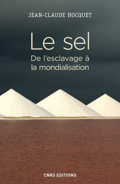 Le sel ; de l'esclavage à la mondialisation