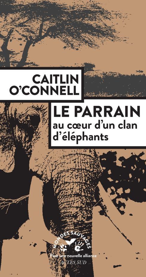 LE PARRAIN  -  AU COEUR D'UN CLAN D'ELEPHANTS