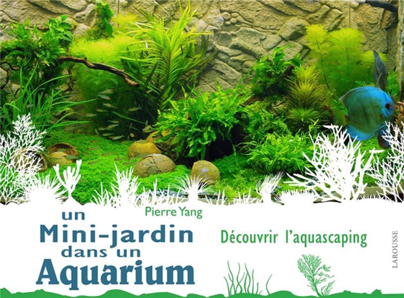 Un mini-jardin dans un aquarium