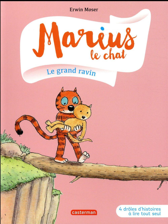 Marius le chat T.10 ; le grand ravin