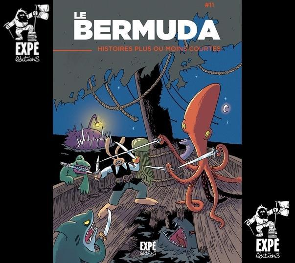 Projet bermuda T.11 ; histoires plus ou moins courtes