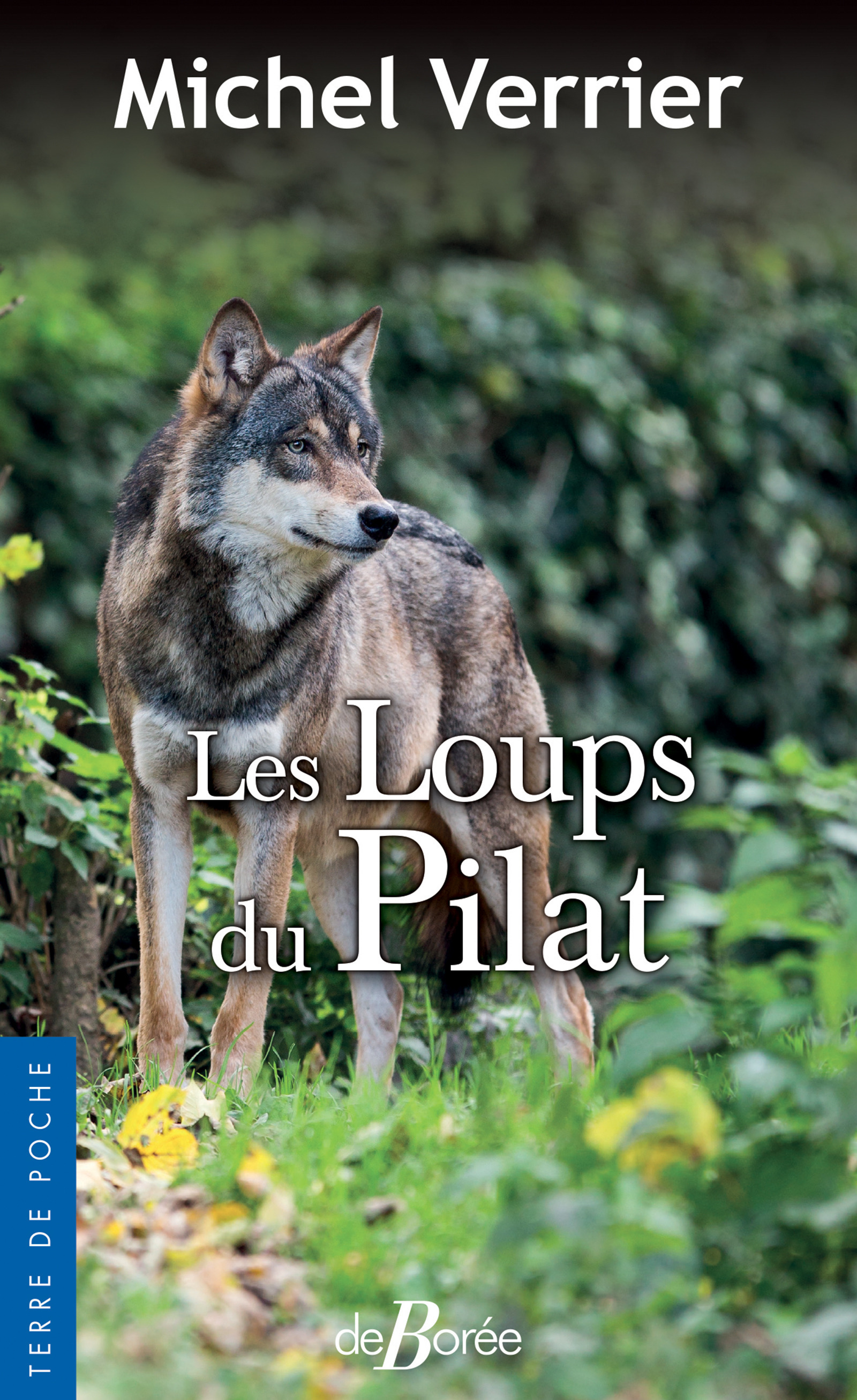 Les loups du pilat