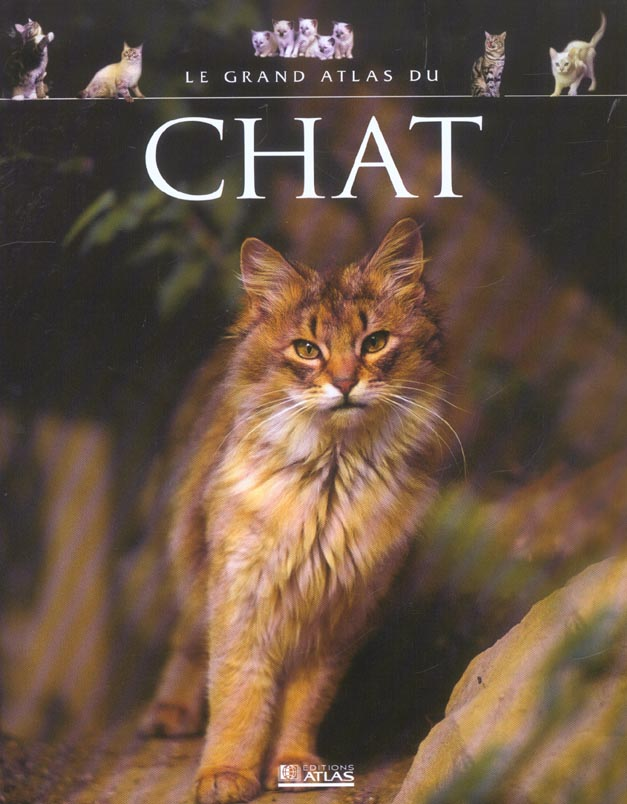 Le grand atlas du chat