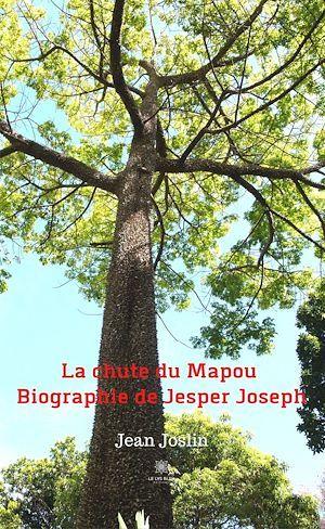 La chute du Mapou  - Jean Joslin