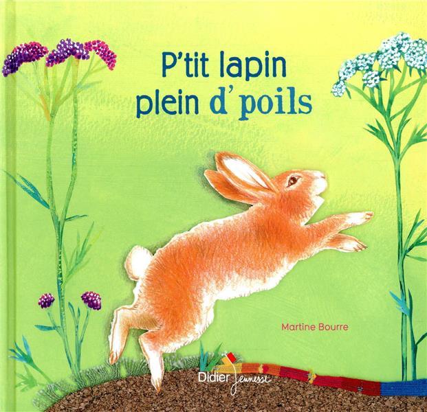 P-TIT LAPIN PLEIN D-POILS