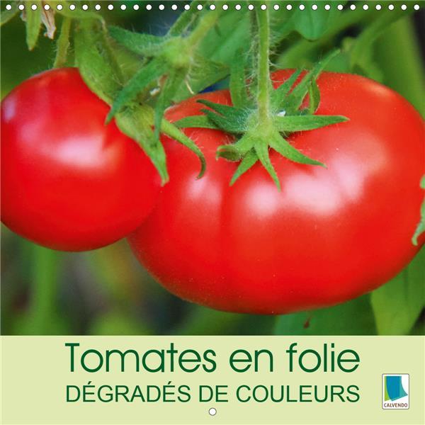 Tomates en folie ; dégradés de couleurs